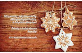 Šviesių ir jaukių žiemos švenčių!